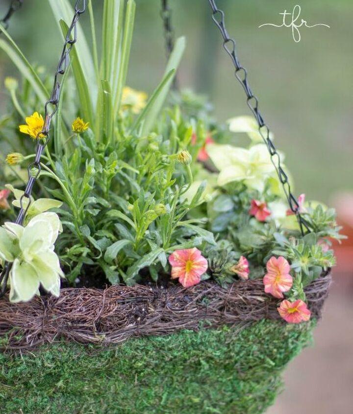 s diy hanging plants, Starting Your Own Hanging Basket Plants