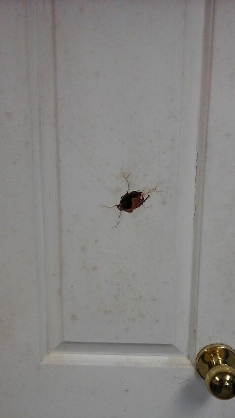 q how to fix a hole in a hollow door