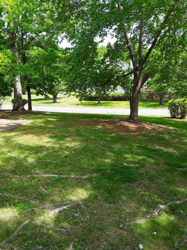 q how do i fix landscaping