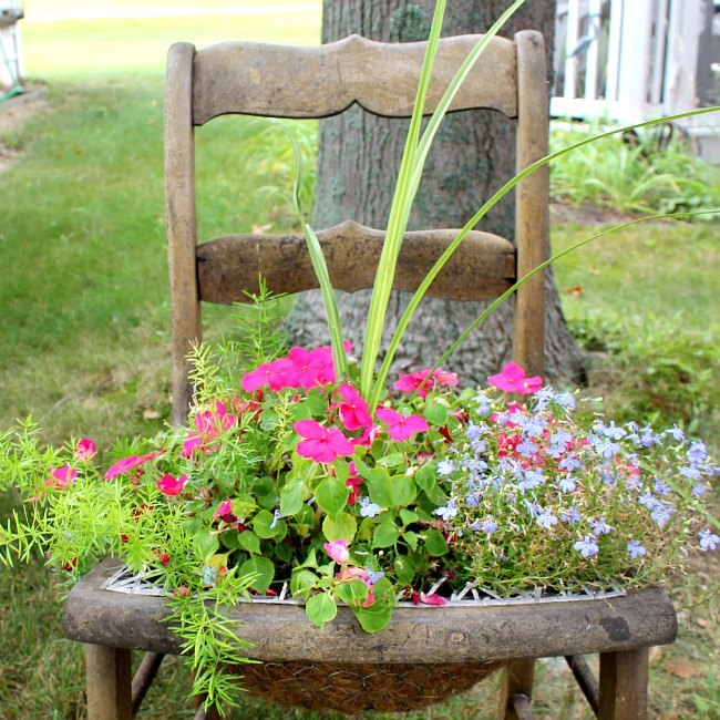 chicken wire plant chair