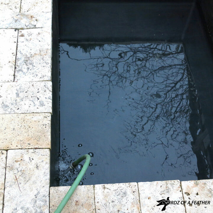 pond maintenance get your pond ready for summer