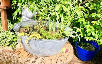 How to Make an Easy Mini Aquatic Plants Pond With an Old Metal Washtub