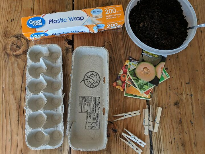 indoor egg carton greenhouse gardening with kids