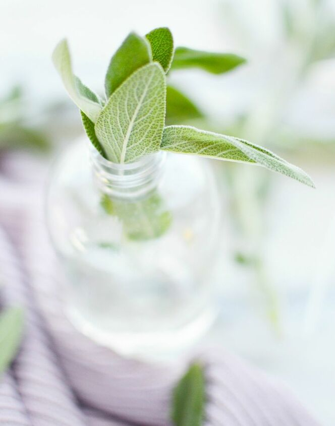 natural sage cleansing spray for the home
