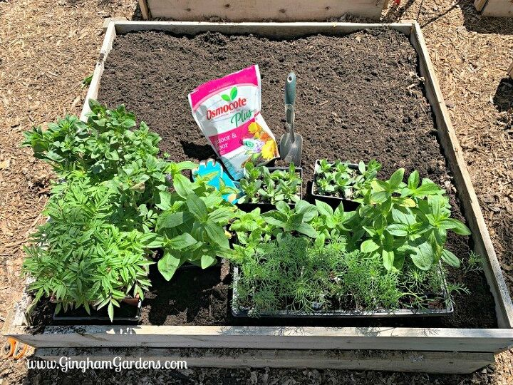how to plant your very own cutting garden