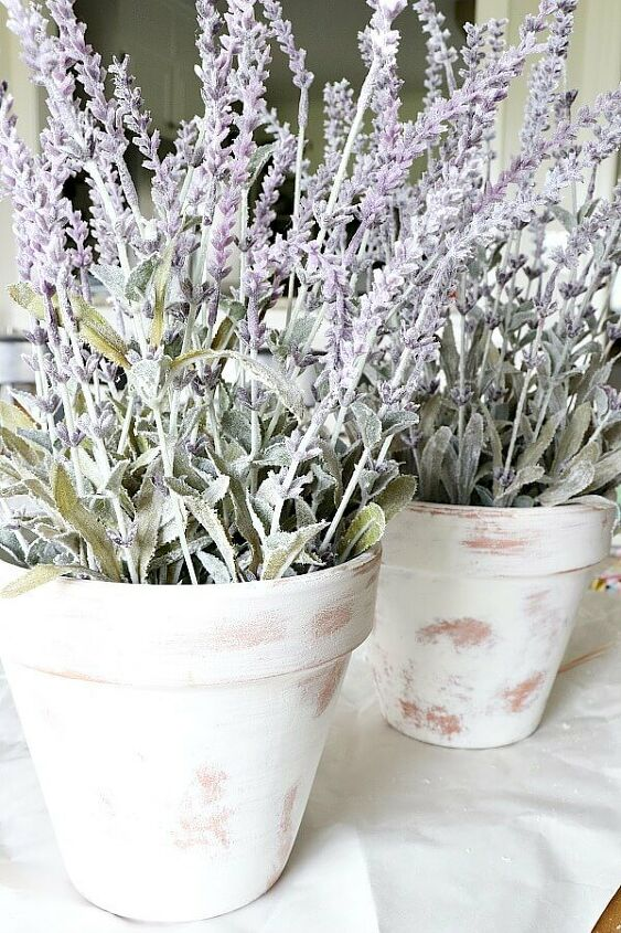 diy limewash terra cotta lavender plant