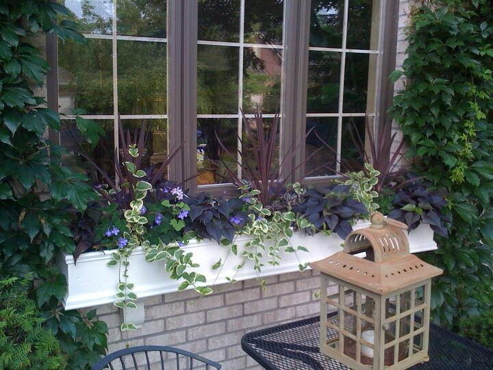 s flower box ideas, Wonderful Window Flower Boxes