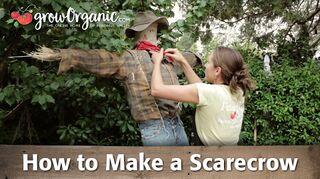 q make a scarecrow for my garden