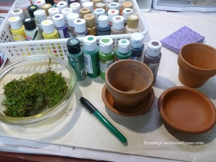 mossy herb planters