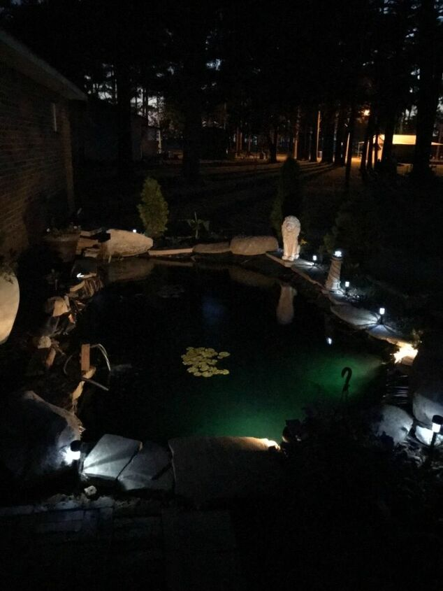 project koi pond