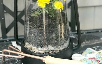 Turn a Lantern Into a Planter
