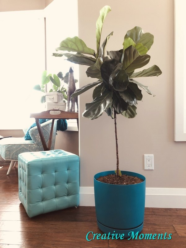 plant pot makeovers with spray paint