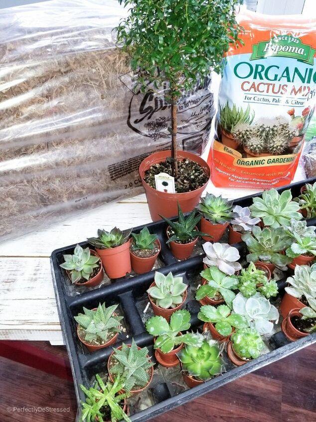 framed succulent planter