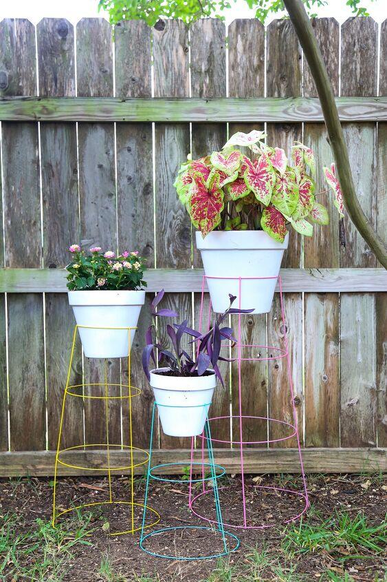 tomato cage plant