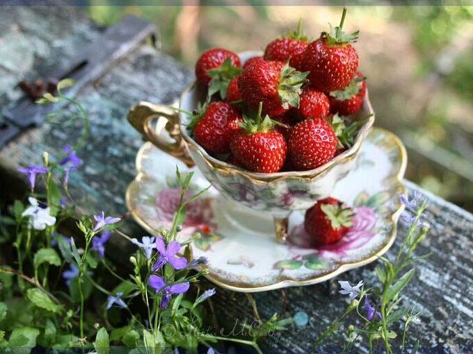 the strawberry patch delicious hacks