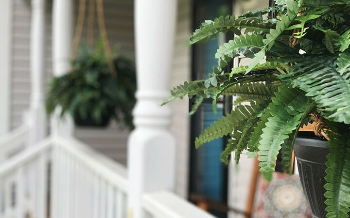how to make realistic looking boston ferns
