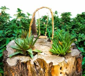 Turn A Tree Stump Into A Planter The Easy Way