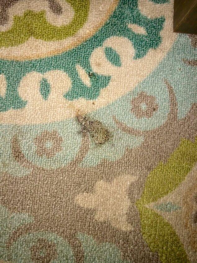 q how do i fix burn on outdoor rug