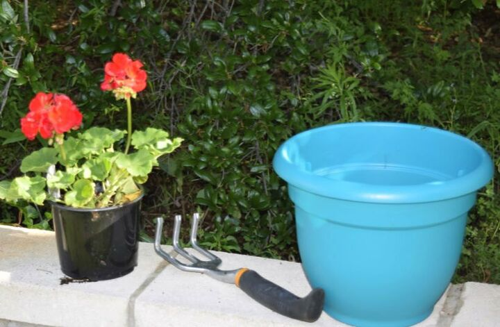 one ingredient potted plant food from tea bags