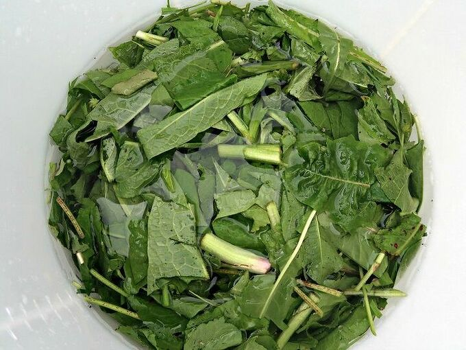 how to make liquid compost from weeds
