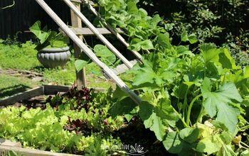3 Vegetable Garden Trellis DIYs