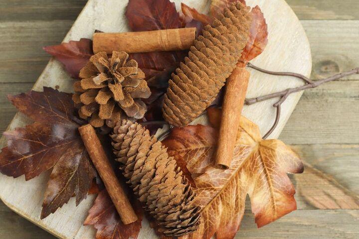 naturally scented cinnamon pine cones
