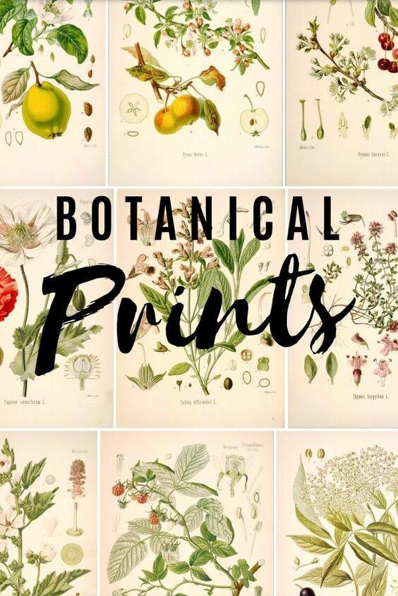 Botanical Print Gallery Wall DIY