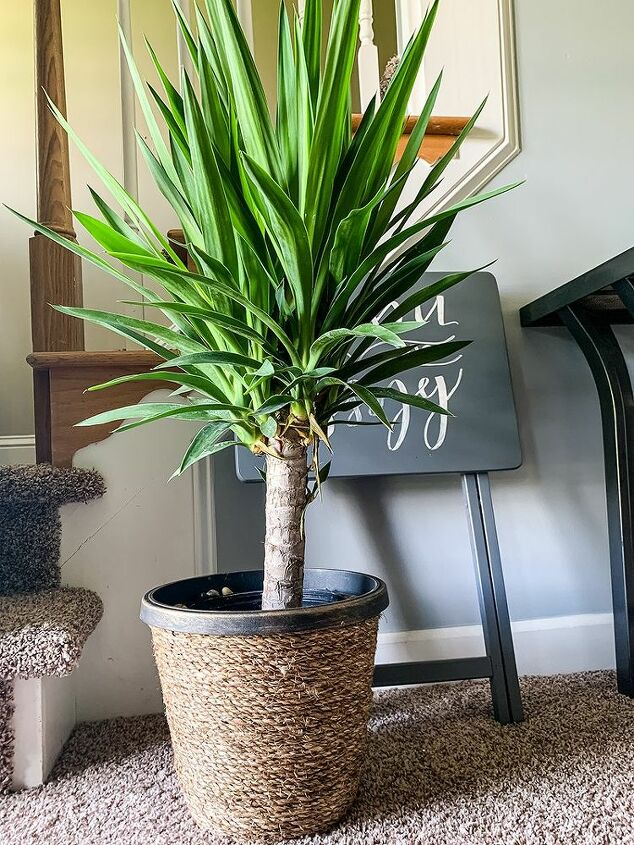 how to make a basket weave planter