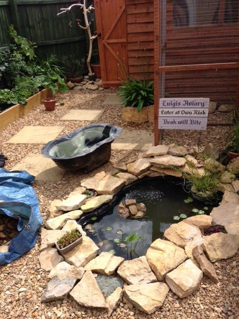 s outdoor pond, 4 Expanded Outdoor Fish Pond