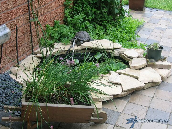 Make a Splash in Your Garden by Adding an Exciting Outdoor Pond