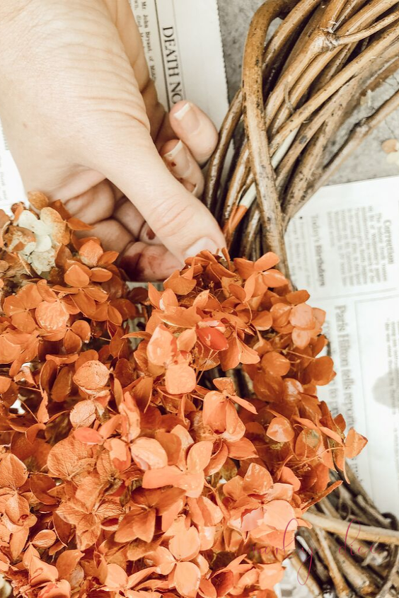 snip off your dead hydrangeas for a new look