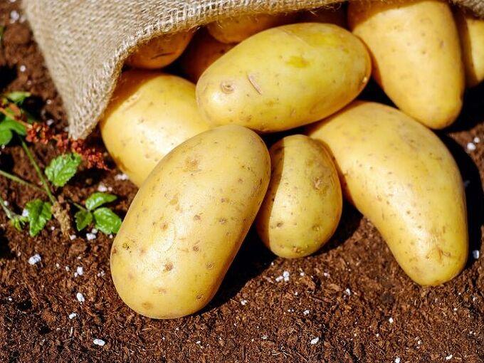grow potatoes, Growing Potatoes Pixabay