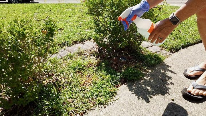 does this natural weed killer work