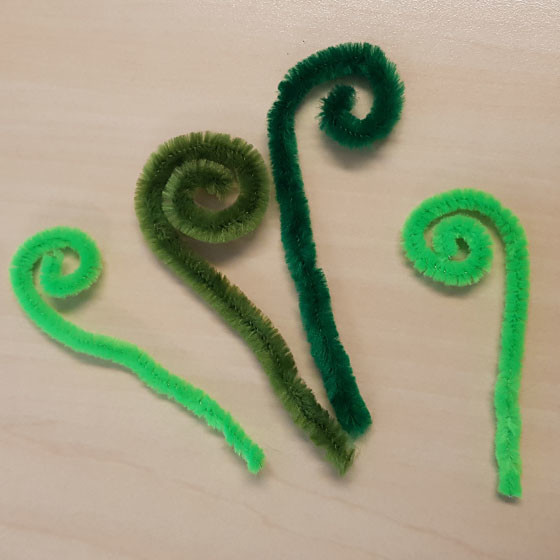 carnivorous chenille and walnut shell plant