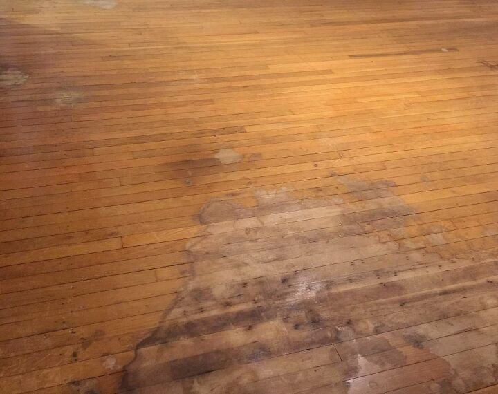 a wood floor face lift without sanding stripping or priming