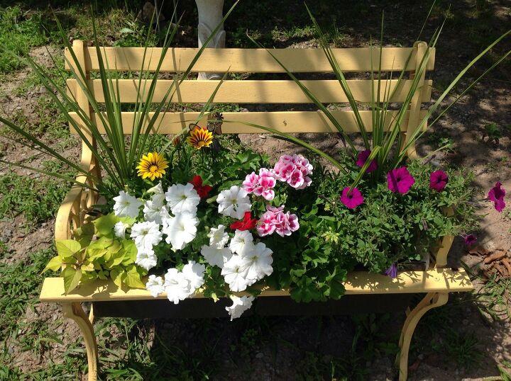 planters to grow flowers