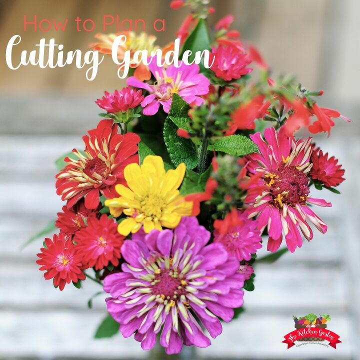 grow a cutting garden