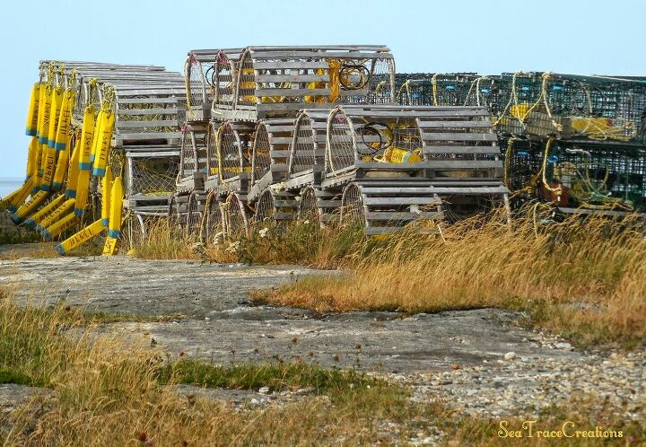 Lobster Fishing Traps