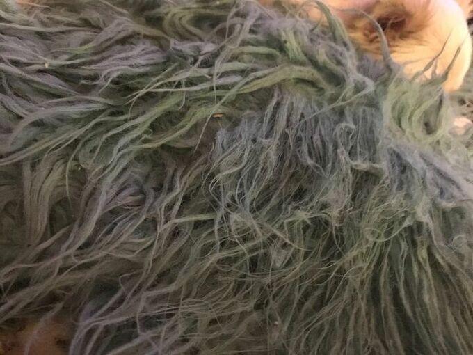 q refresh a long faux fur pillow