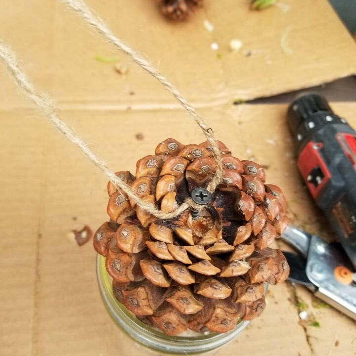 Attach Twine to the Pine Cone