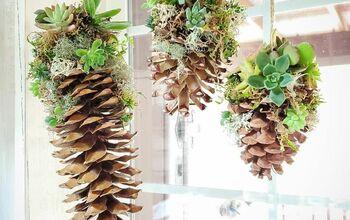 Winter Succulent Decor