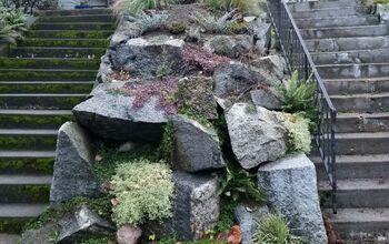Rockery Wall Redo