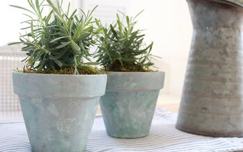 How to Age Terracotta Pots