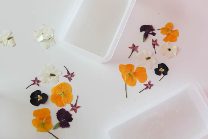 pressed flowers in resin