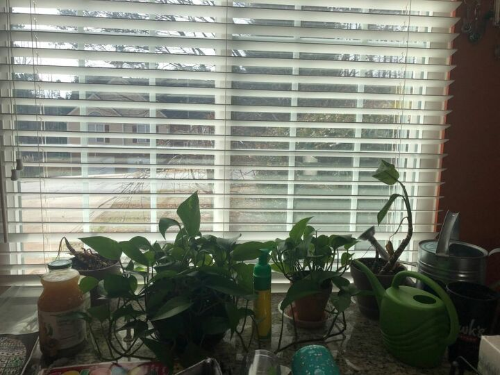q what can i use for my indoor plants
