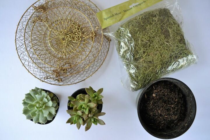 how to make a hanging succulent planter