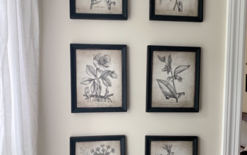 Vintage Botanical Print Gallery Wall