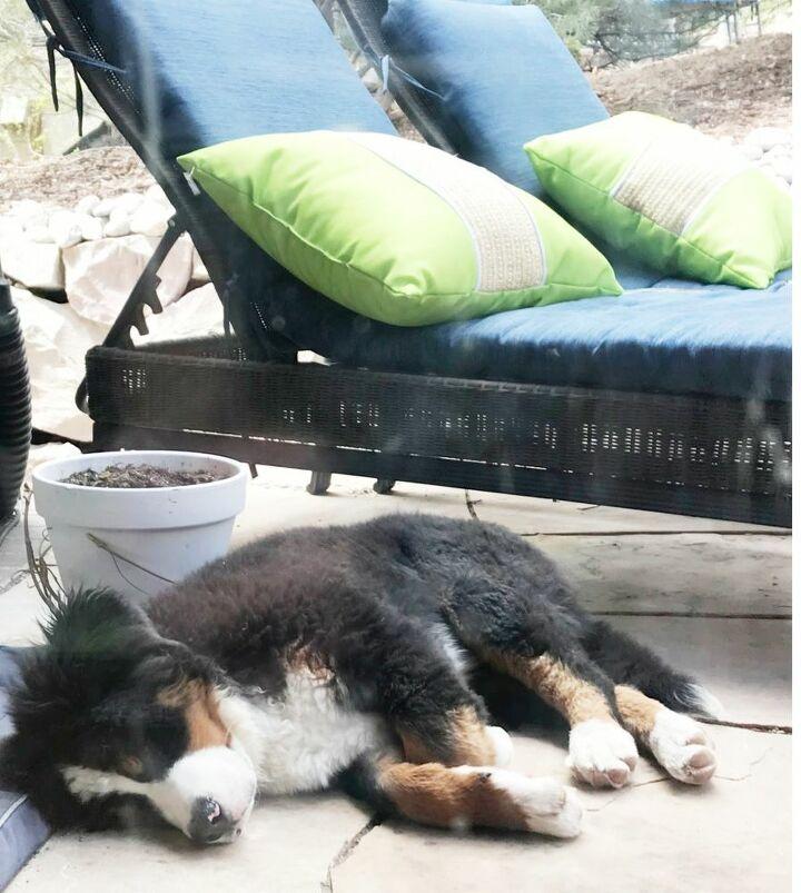 how to keep patio cushions dry
