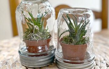 Succulent Terrarium Using a Mason Jar