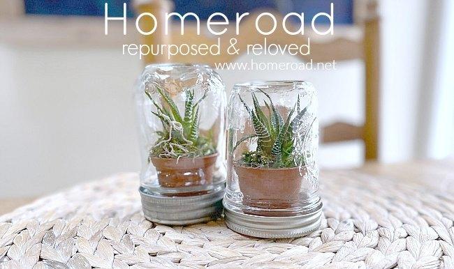 succulent terrarium using a mason jar